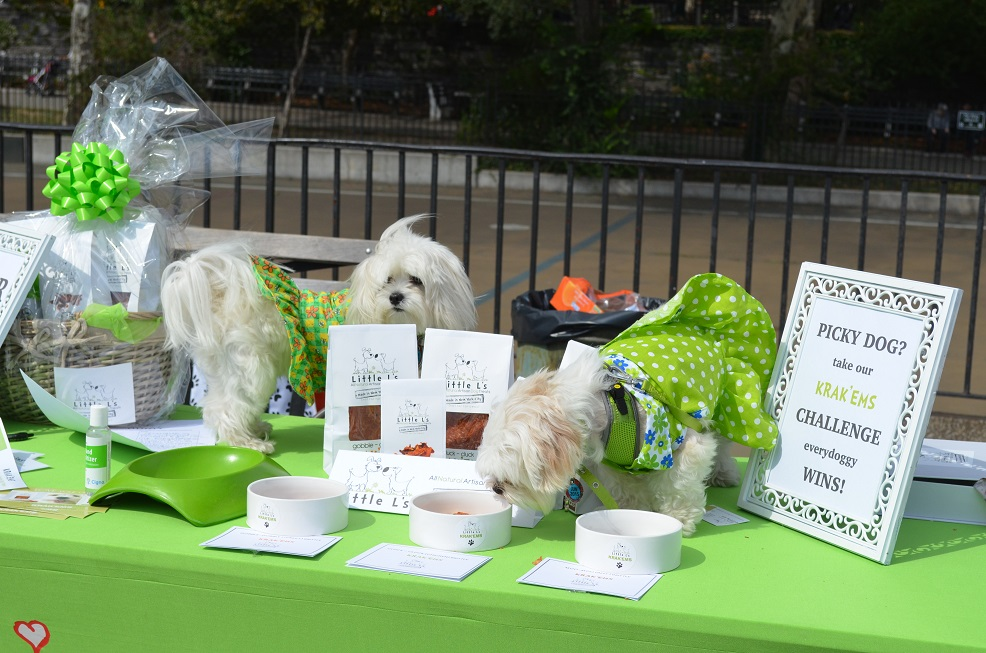 best dog charities in nyc to donate or sponsor