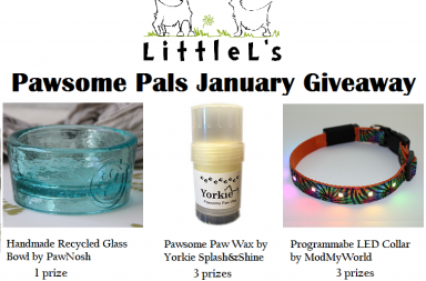 dog products giveaways