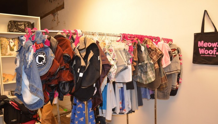 designer dog clothes for a good cause