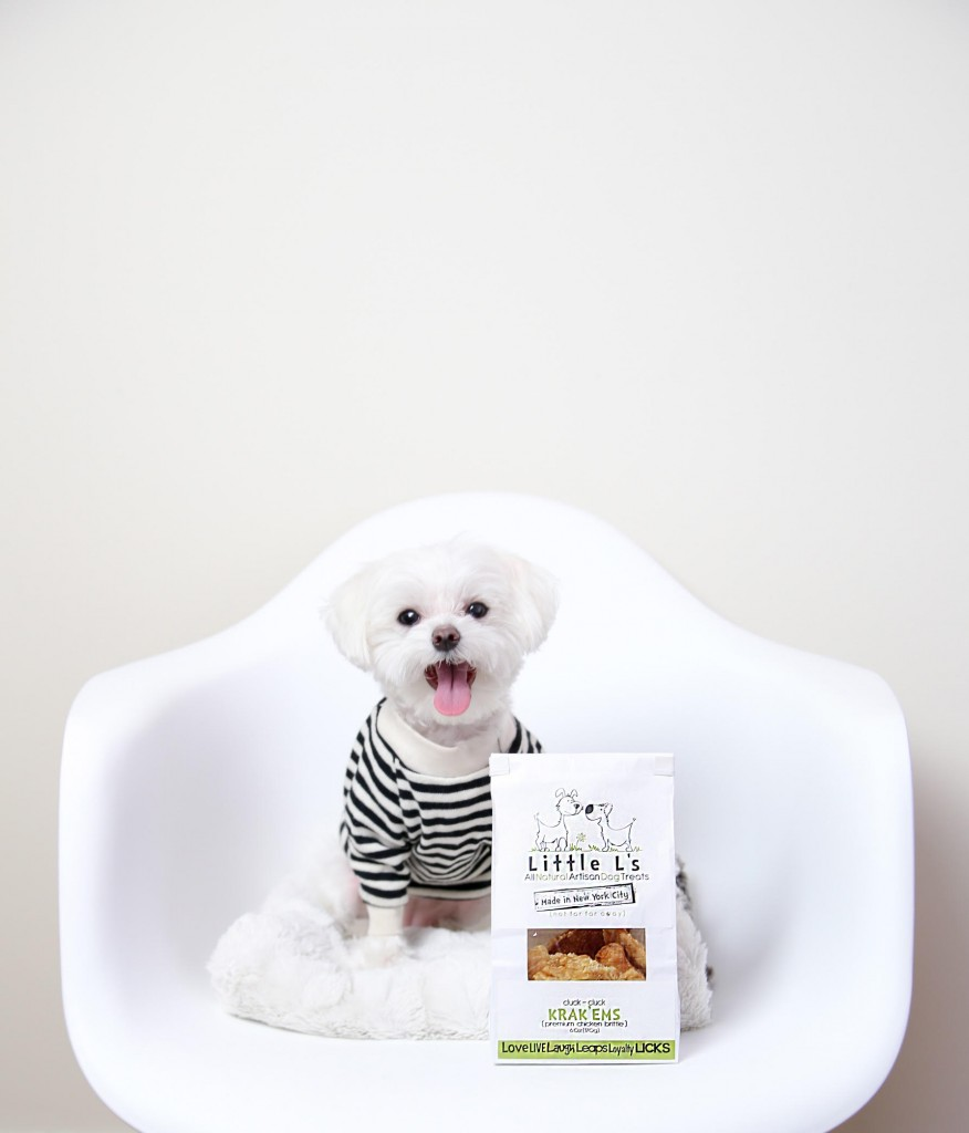 good all meat treats for dogs made in usa - recommended by mochi the celebrity dog!