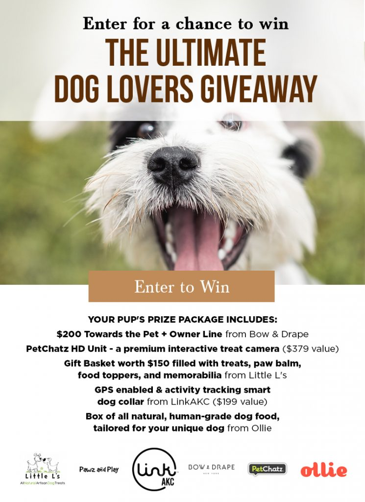 free sweepstakes and giveaway for dog lovers and dog parents