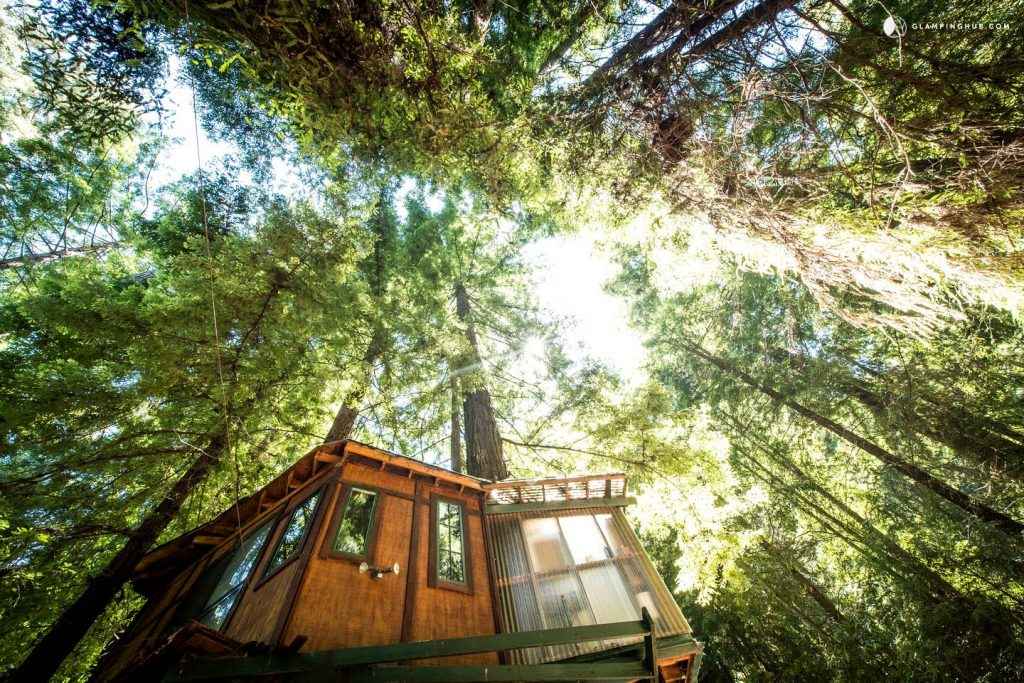 luxury pet getaways with Glamping Pets in California