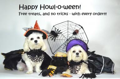 halloween turkey treats for dogs