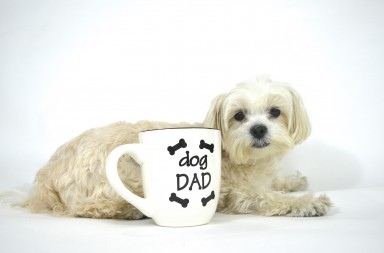 need gift ideas for dog dads? men with dogs love this cute coffee mug